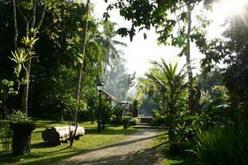 Kayu Arum Resort Salatiga