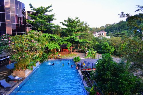 Kolam Renang Hotel Oak Tree Emerald